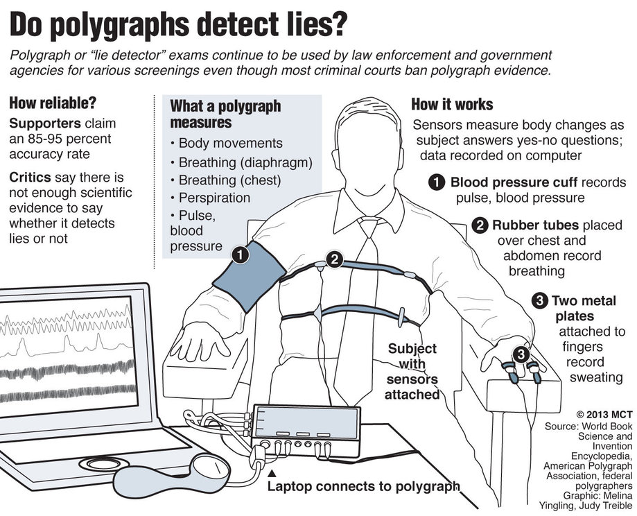 poygraph-info-graphic