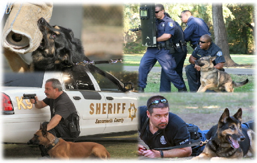 police-training-WA